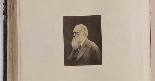 A.N. Wilson Tiene Razón: «Darwin Estaba Equivocado»